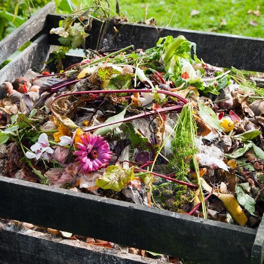 Yard waste: Recycling And Preparing For Pickups