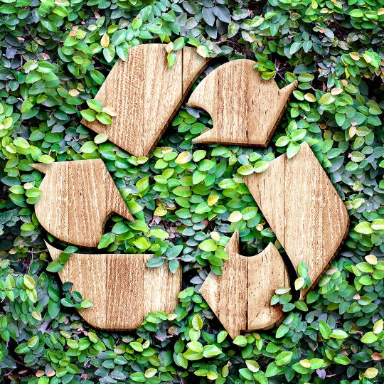 Celebrating Earth Day: Surprising Things You Can Recycle
