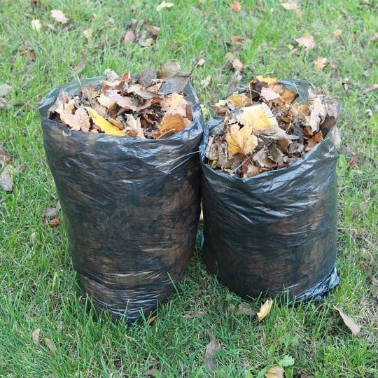Lawn Waste: How to Prepare it for Pickup