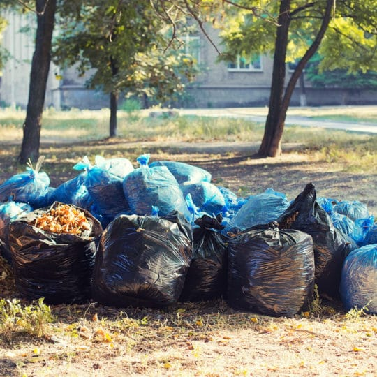 Fall Yard Waste Removal Tips