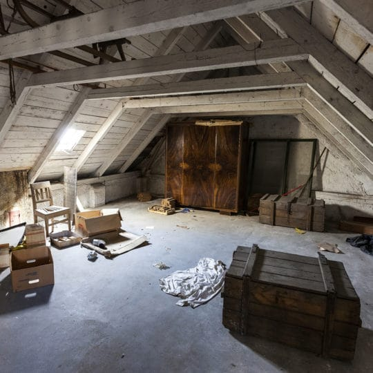 The Importance of a Good Attic Cleaning